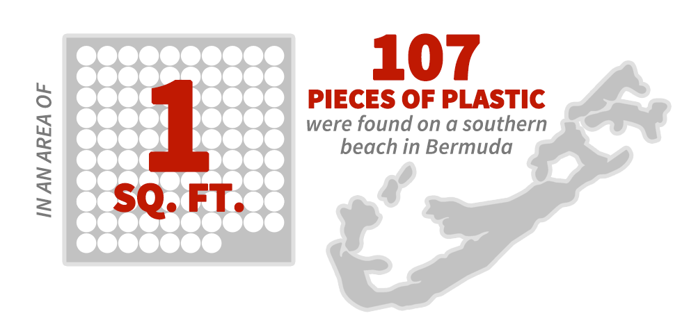 In an area of 1 sq. ft., 107 pieces of plastic were found on a southern beach in Bermuda.